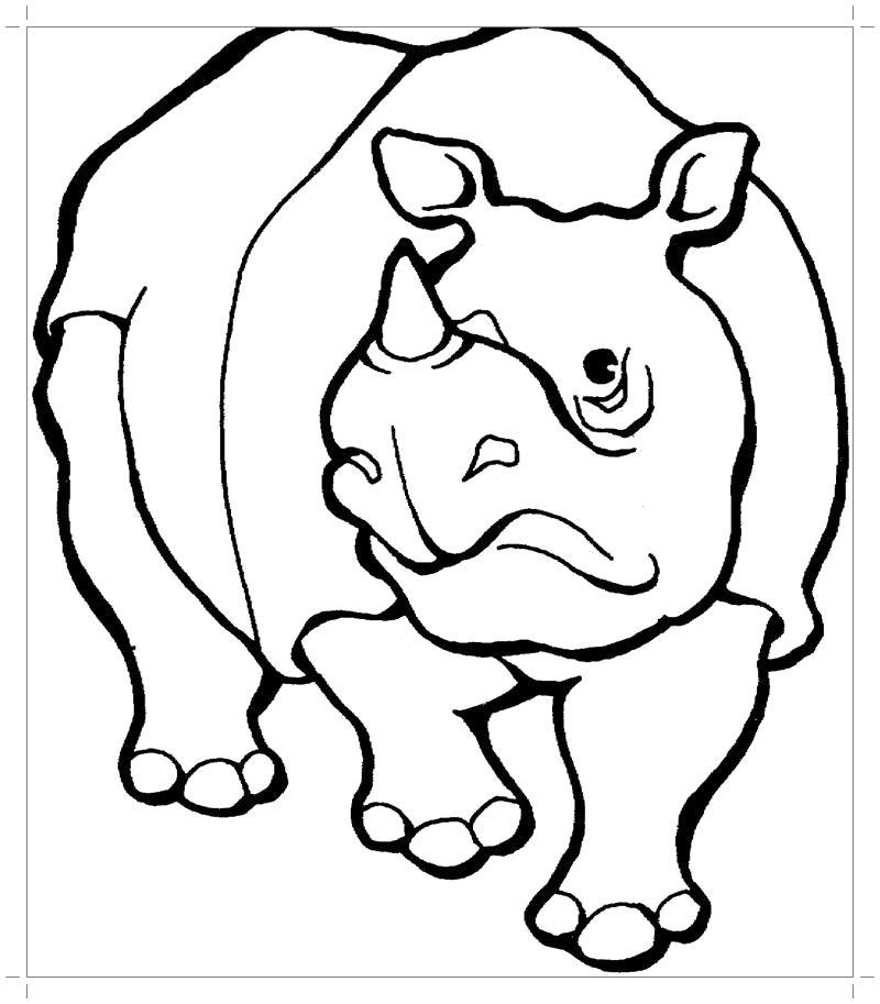 Раскраска   носорог. Скачать Носорог.  Распечатать Дикие животные