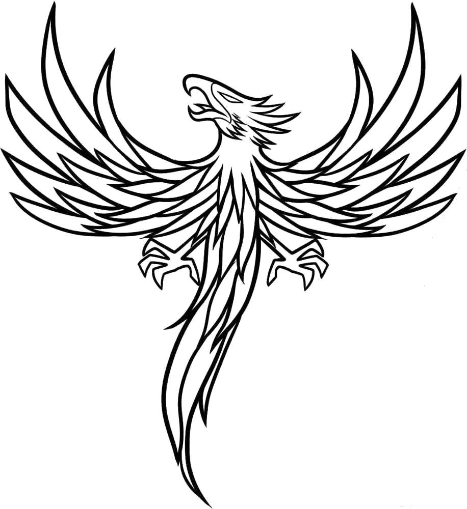 Раскраска Магическая птица. Скачать .  Распечатать