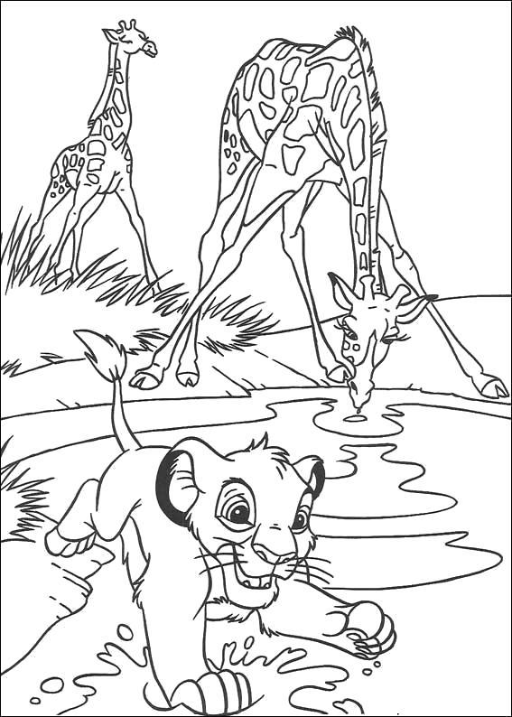 Раскраска Жирафа и тигренок на водопое. Скачать жираф, Тигр.  Распечатать Дикие животные