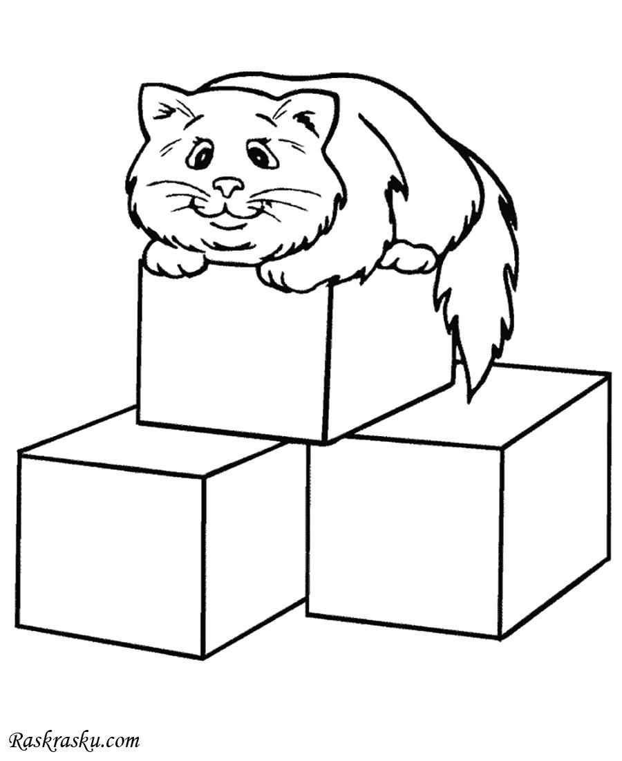 Раскраска Кошка на кубиках. Скачать кошка.  Распечатать кошка