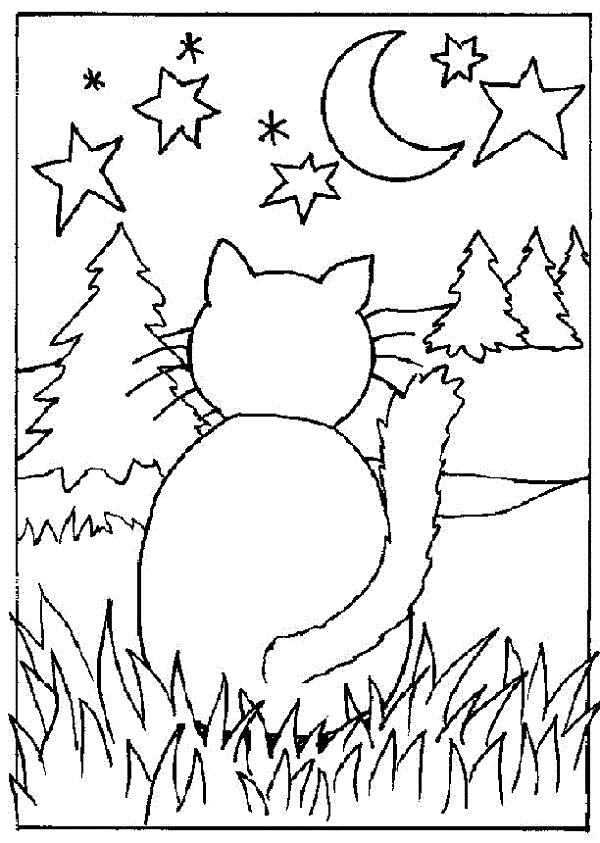 Раскраска Кот ночью. Скачать Котенок.  Распечатать Домашние животные
