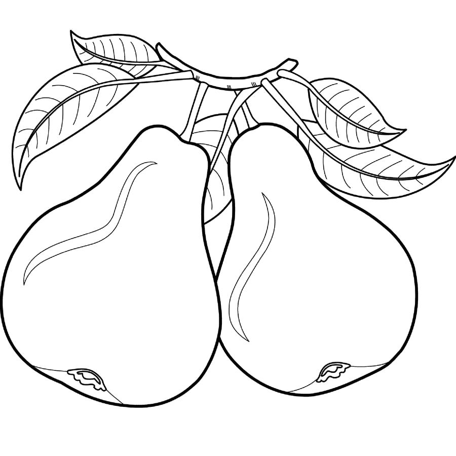Название: Раскраска раскраска груша. Категория: Фрукты. Теги: груша.