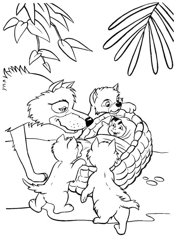 Раскраска Стая нашла Маугли. Скачать книга джунглей.  Распечатать книга джунглей
