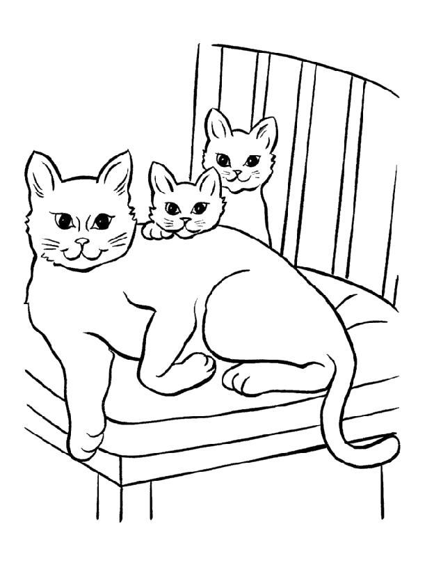 Раскраска  Кошка. Скачать кошка, Котенок.  Распечатать Домашние животные