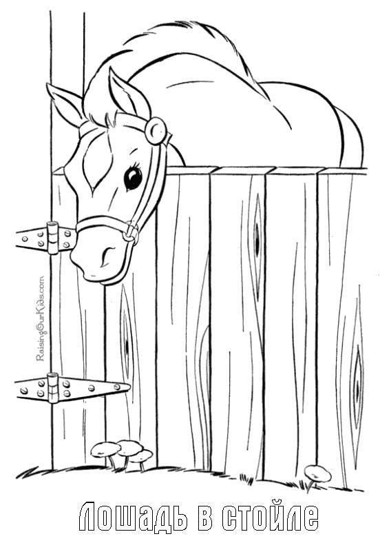 Раскраска  конь в стойле. Скачать .  Распечатать
