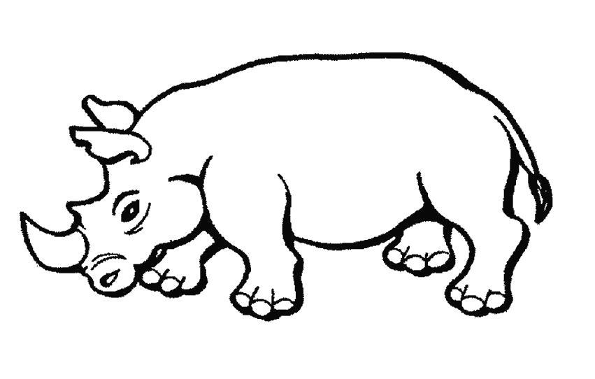 Раскраска носорог идет. Скачать Носорог.  Распечатать Дикие животные