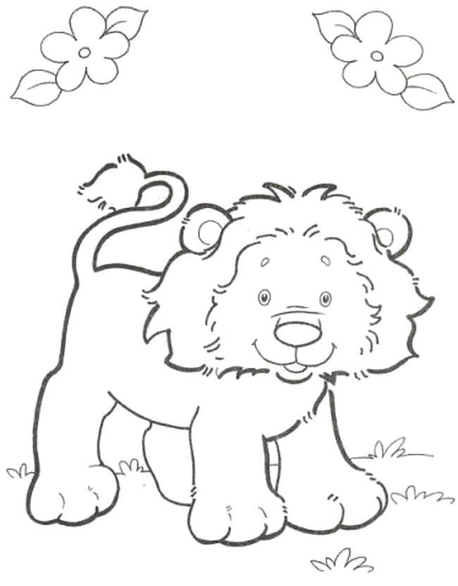 Раскраска Львенок. Скачать Лев.  Распечатать Дикие животные