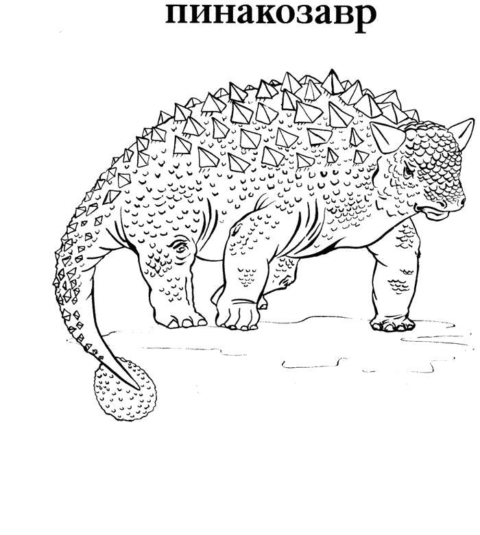 Раскраска  Динозавры, пинакозавр. Скачать динозавр.  Распечатать динозавр