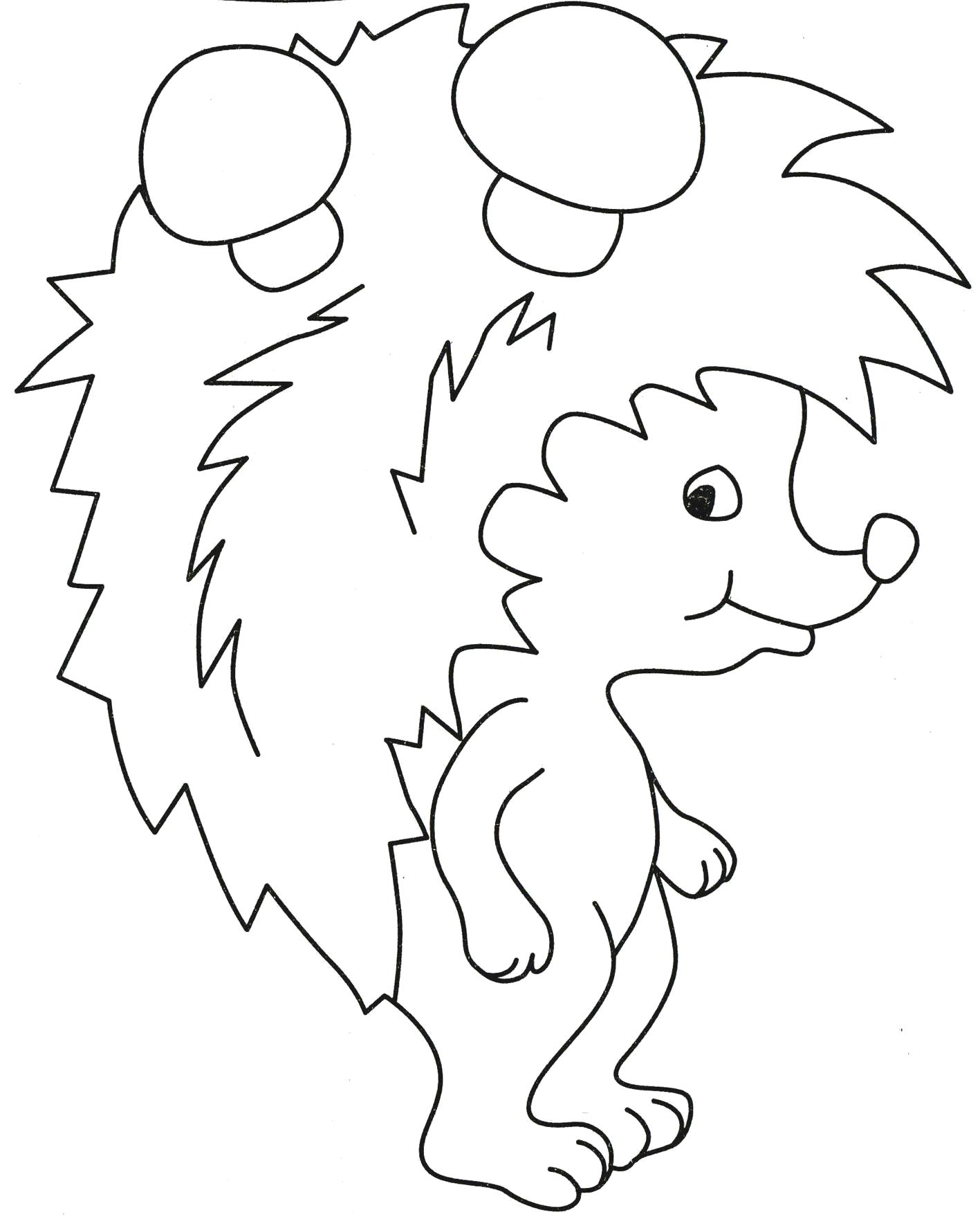 Раскраска  ежик  животные, природа, лесные животные, дикие животные, простая ,  грибы, иголки, ежи... . Скачать Ежик.  Распечатать Дикие животные