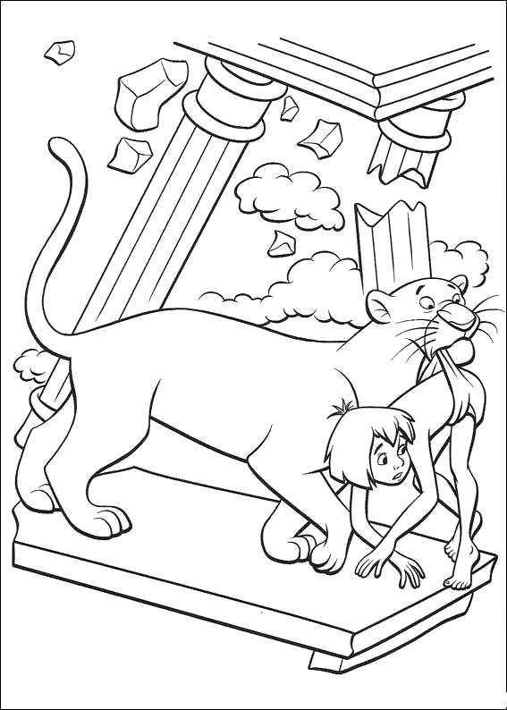 Раскраска Багира несёт Маугли. Скачать книга джунглей.  Распечатать книга джунглей