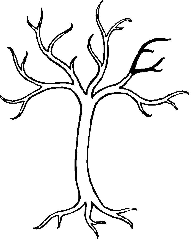 Раскраска  Деревья без листьев . Скачать дерево.  Распечатать растения