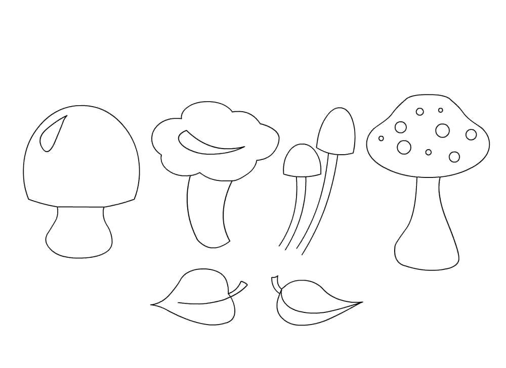 Раскраска разные грибы. Скачать гриб.  Распечатать растения