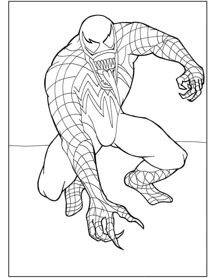 Раскраска  Человек Паук. Скачать Человек Паук.  Распечатать Человек Паук