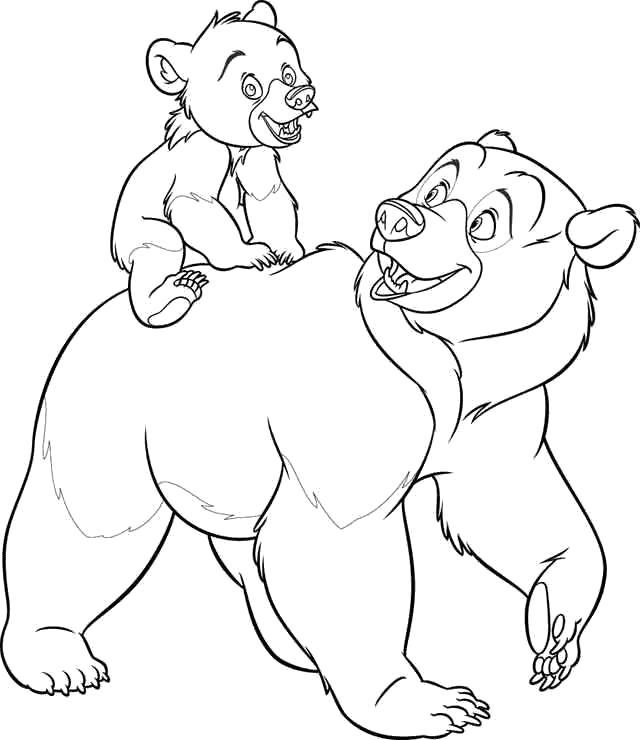 Раскраска медведица катает медвежонка. Скачать медведь.  Распечатать Дикие животные