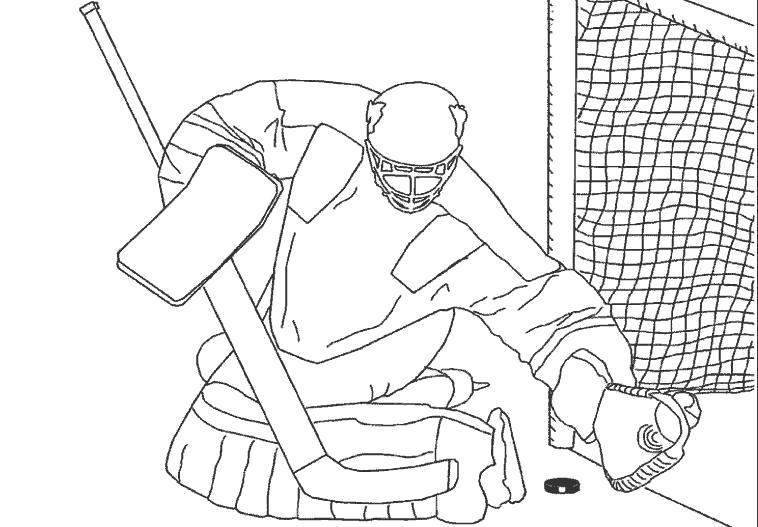 Название: Раскраска Вратарь, Вратарь ловит шайбу, . Категория: Хоккей. Теги: Хоккей.