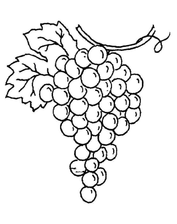 Раскраска  кисть винограда. Скачать виноград.  Распечатать ягоды