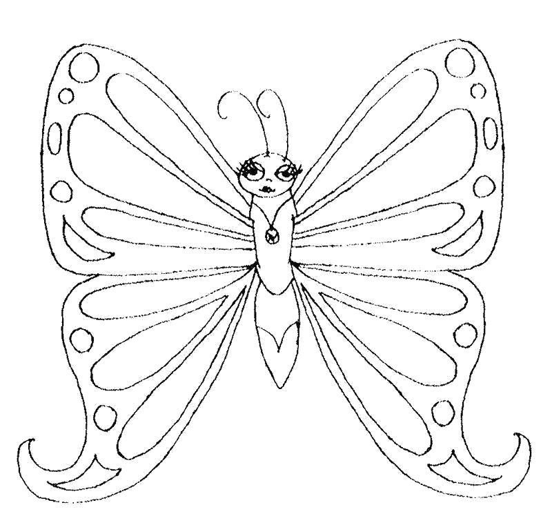 Раскраска картинки бабочек для вырезания. Скачать для вырезания.  Распечатать для вырезания