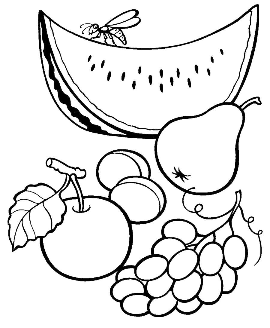 Название: Раскраска Осенние продукты, арбуз, груша, виноград, яблоко, абрикос. Категория: продукты. Теги: продукты.