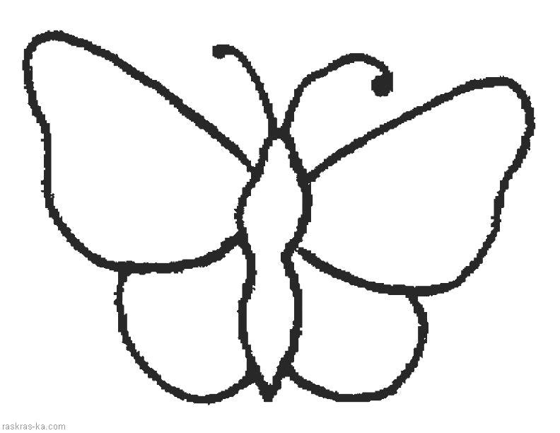 Раскраска  для самых маленьких. Бабочка. Скачать Бабочки.  Распечатать Бабочки