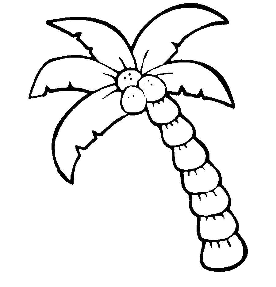 Раскраска Деревья для вырезания из бумаги трафарет пальмы, контур пальмы. Скачать Трафарет.  Распечатать Трафарет