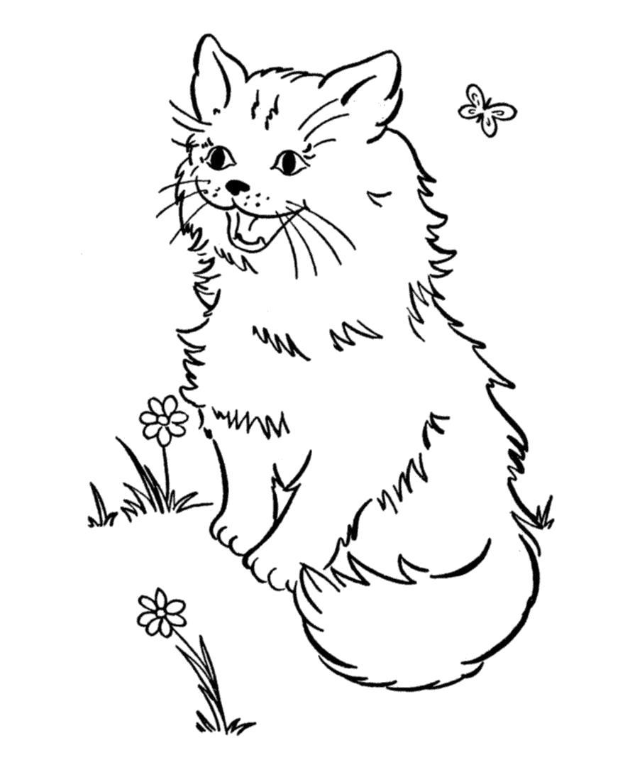 Раскраска Кошка. Скачать кошка.  Распечатать Домашние животные