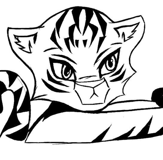 Раскраска Красивый тигренок. Скачать Тигр.  Распечатать Дикие животные