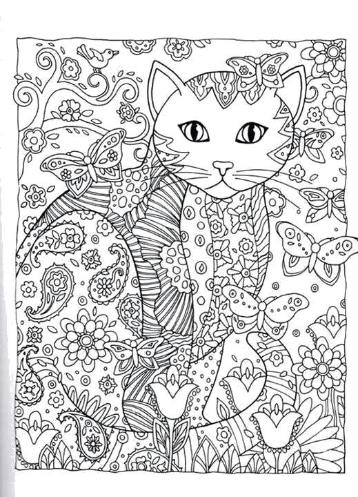 Раскраска кошка. Скачать природа, животные.  Распечатать антистресс