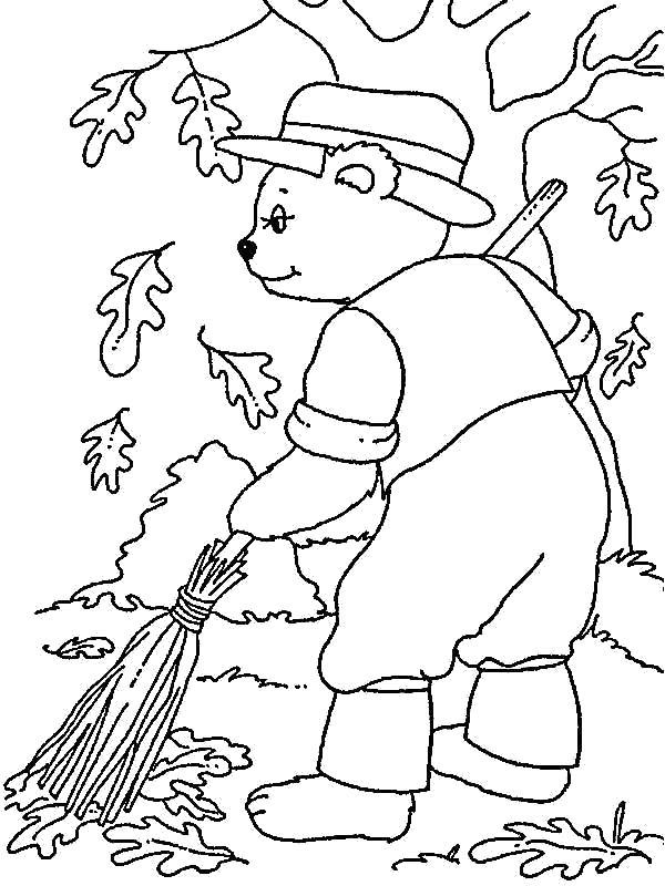 Раскраска сбор дубовых листьев. Скачать Осень.  Распечатать Осень
