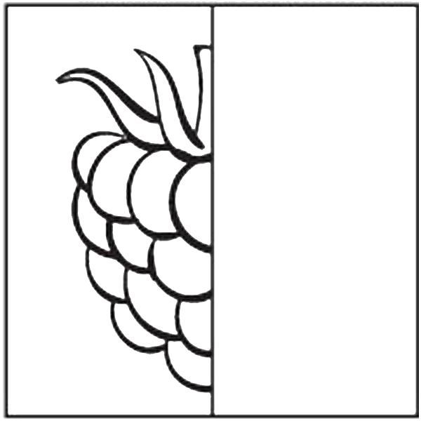 Раскраска малина, дорисуй и раскрась, ягоды. Скачать ягоды.  Распечатать ягоды