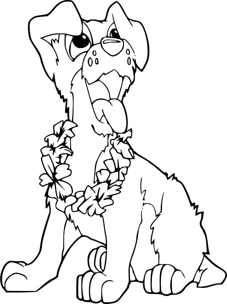 Раскраска Веночек из цветов. Скачать Собаки.  Распечатать Собаки