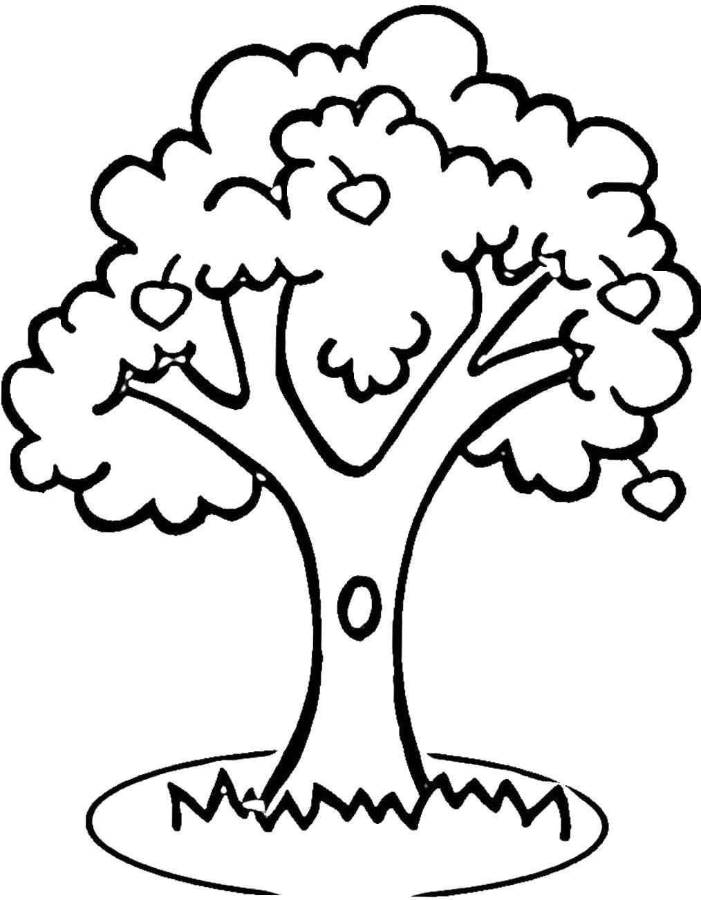 Раскраска Дерево с дуплом. Скачать деревья.  Распечатать деревья