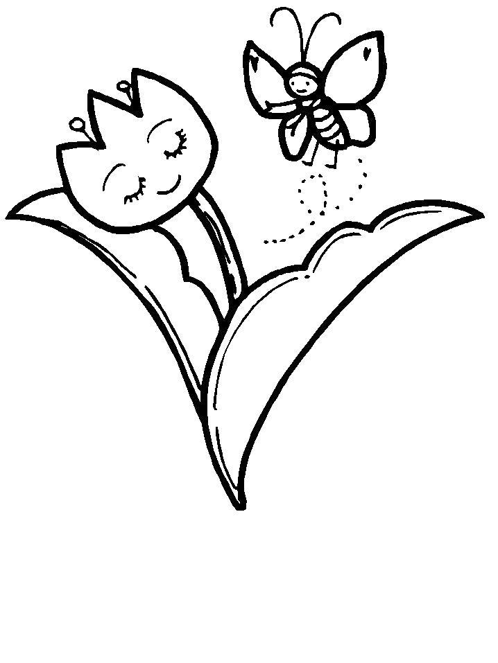 Раскраска  Ночной цветок. Скачать Цветы.  Распечатать Цветы