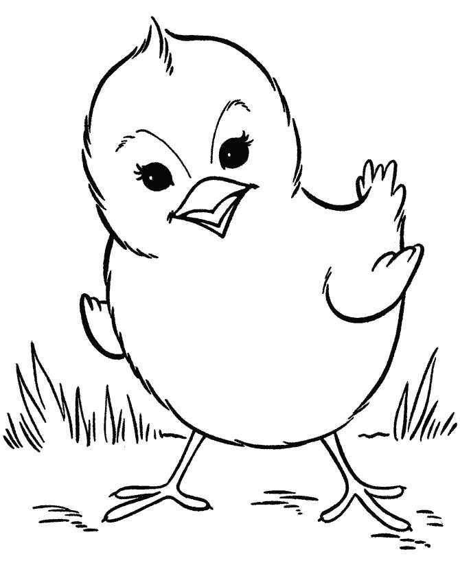 Раскраска Цыпленок. Скачать Цыпленок.  Распечатать Цыпленок