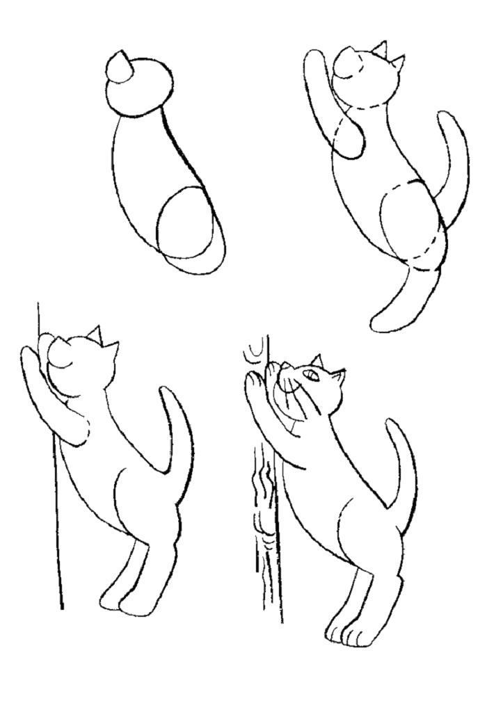 Раскраска как нарисовать кота, кот подтягивается. Скачать Как нарисовать.  Распечатать Как нарисовать