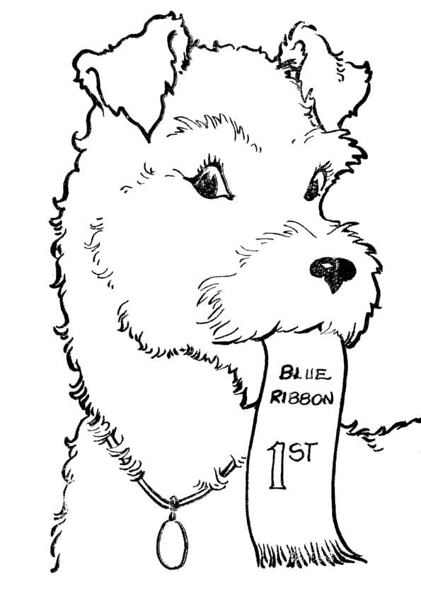 Раскраска Щенок с билетиком. Скачать Собаки.  Распечатать Собаки