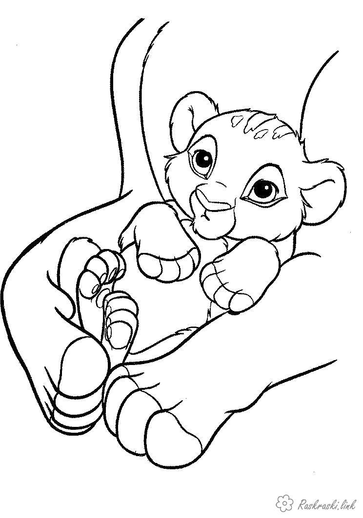 Раскраска  маленький забавный львенок. Скачать Лев.  Распечатать Дикие животные