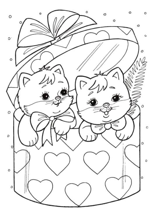Раскраска котята в подарок. Скачать Подарки.  Распечатать Подарки