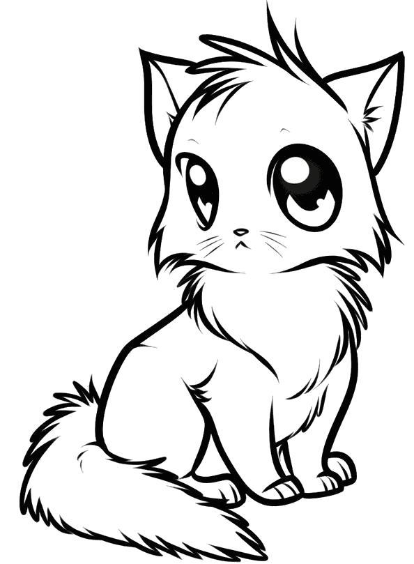 Раскраска Котенок. Скачать кот, Котенок.  Распечатать Домашние животные