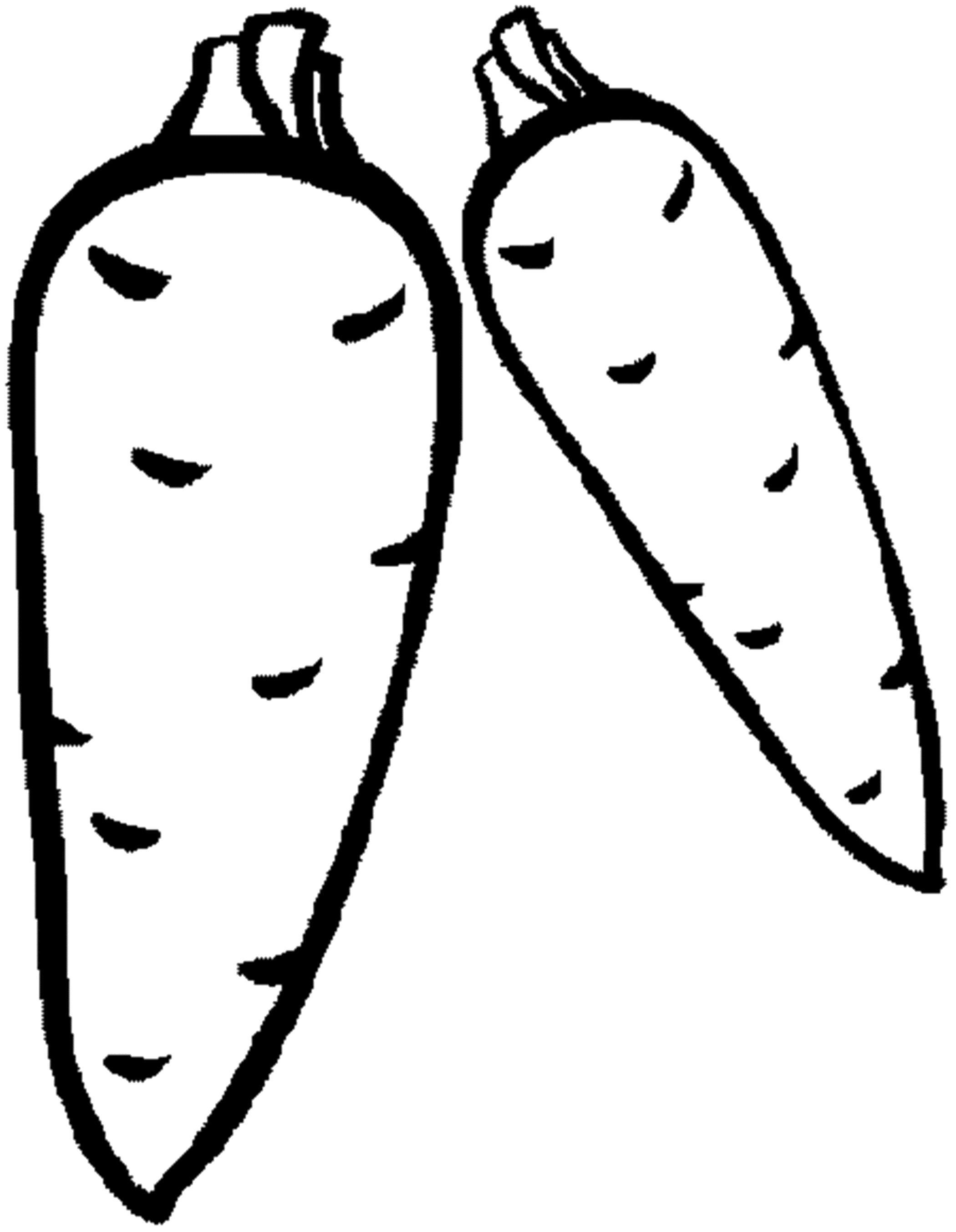 Раскраска Морковка. Скачать .  Распечатать