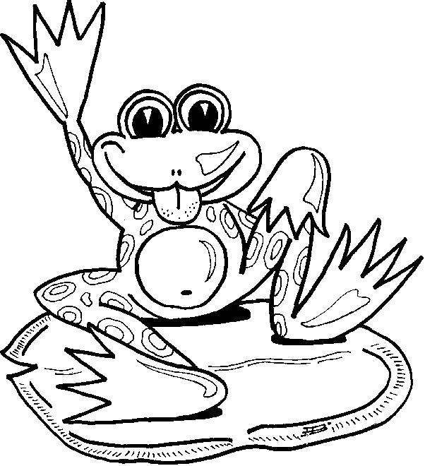 Раскраска  жаба . Скачать .  Распечатать