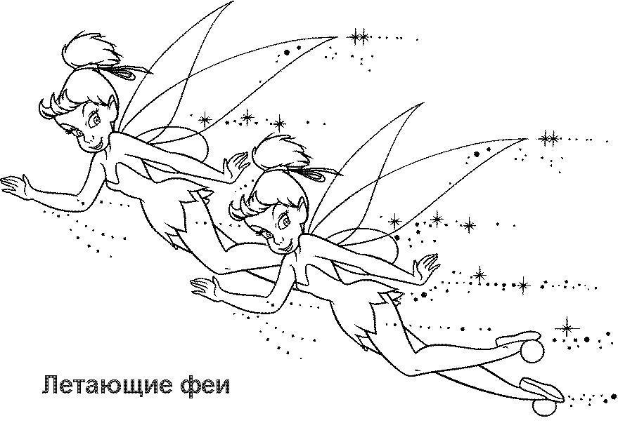 Раскраска Летающие феи. Скачать феи.  Распечатать феи