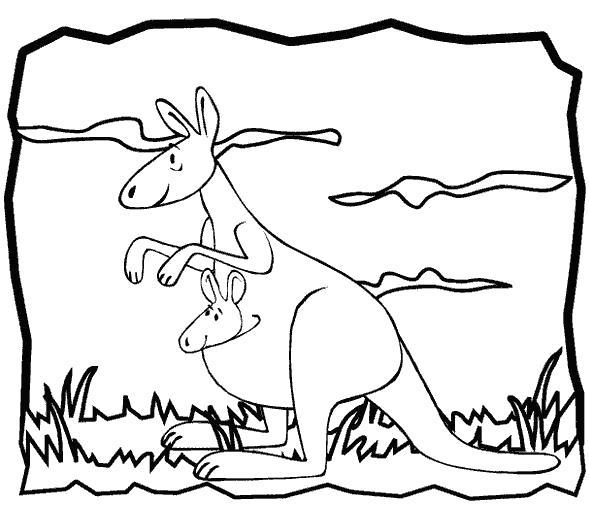 Раскраска Кенгурушки. Скачать кенгуру.  Распечатать кенгуру