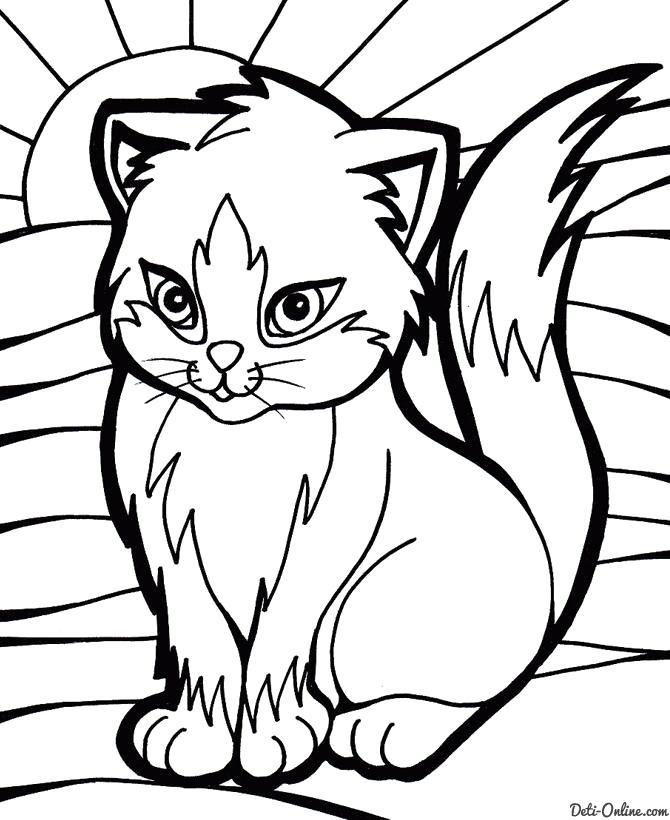 Раскраска  Красивая кошка. Скачать Котенок.  Распечатать Домашние животные