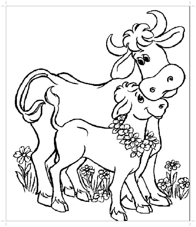 Раскраска  корова и теленок. Скачать Корова.  Распечатать Домашние животные