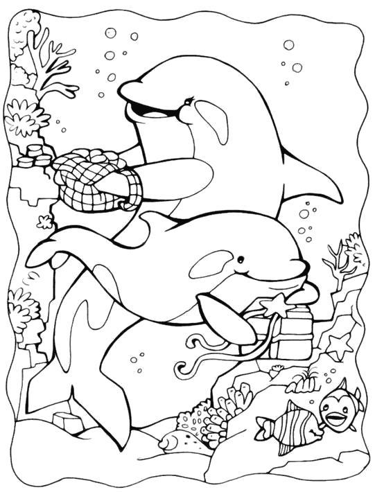 Раскраска дельфины на дне моря. Скачать Дельфин.  Распечатать Морские животные
