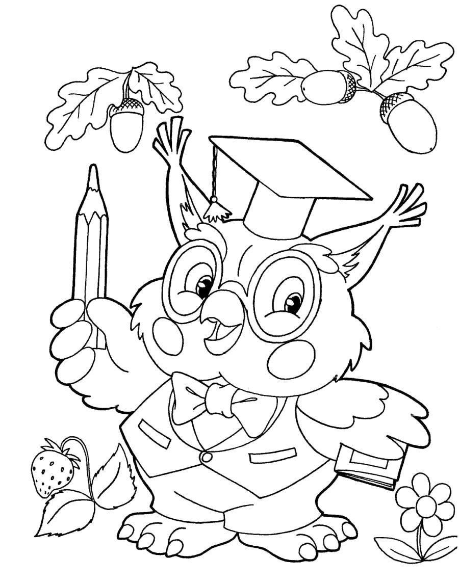 Раскраска Умная сова с карандашами - . Скачать Сова.  Распечатать Сова