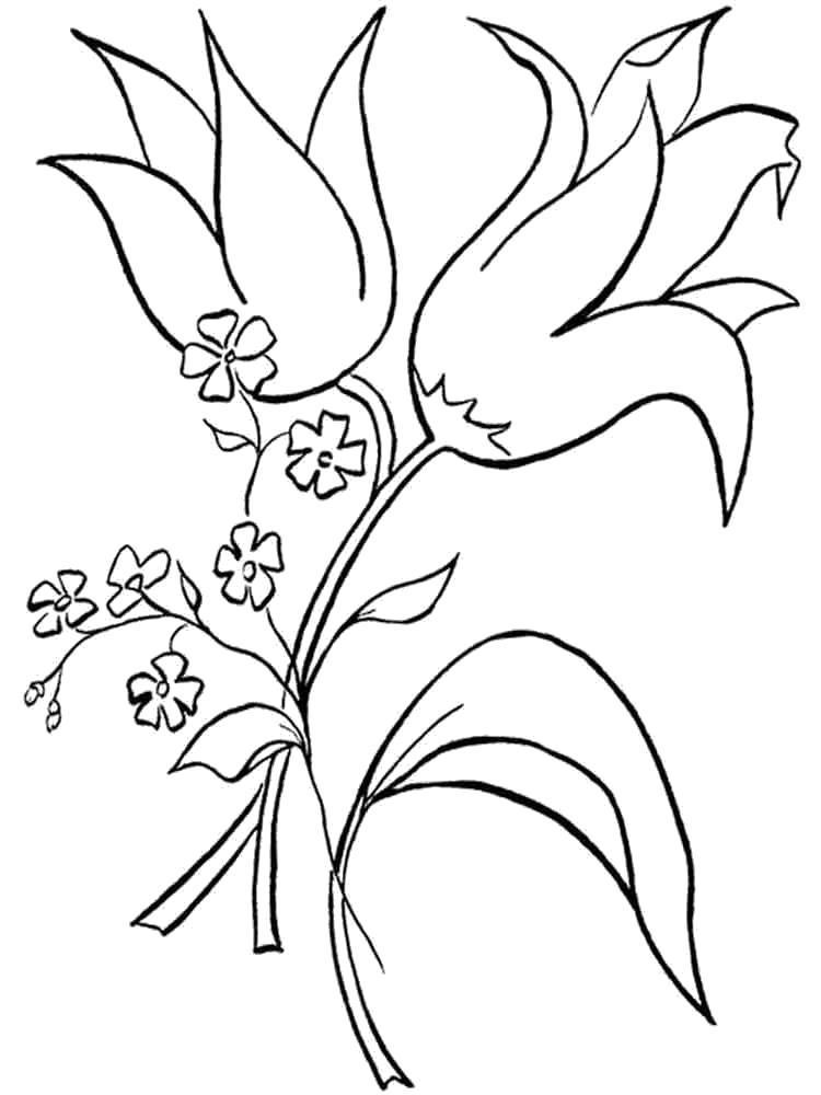 Раскраска  цветы колокольчики. . Скачать Цветы.  Распечатать Цветы