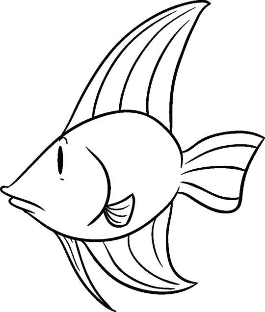 Раскраска Рисунок- маленькой рыбки с большими плавниками. Скачать рыба.  Распечатать Рыбы