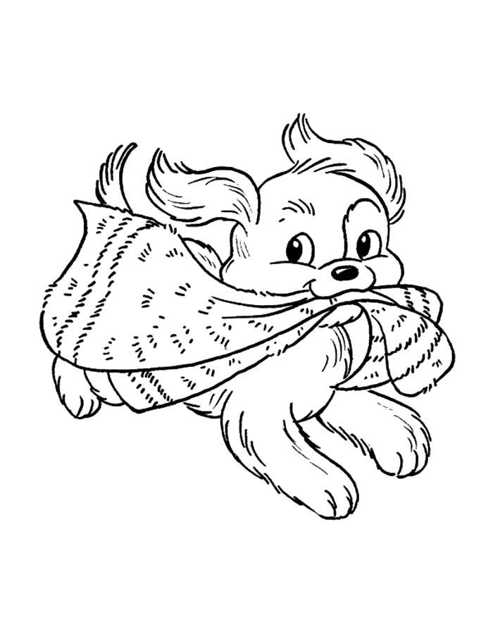 Раскраска  щенок играется с шарфом. Скачать Щенок.  Распечатать Щенок