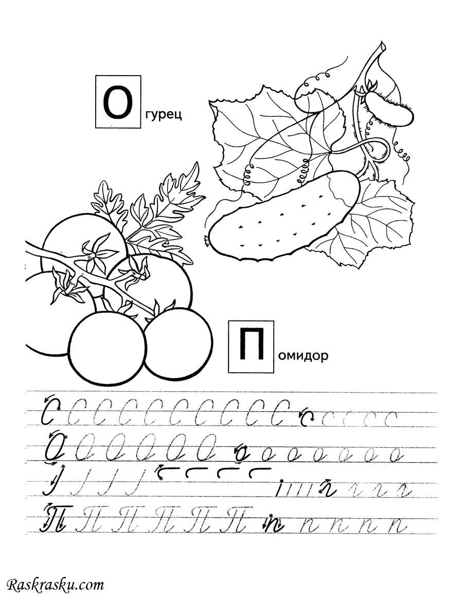 Раскраска Пропись О и П для детей. Скачать пропись.  Распечатать пропись